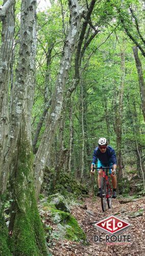 En forêt, sur un sentier relativement souple. Sur ce type de terrain le gravel prend tout son sens.