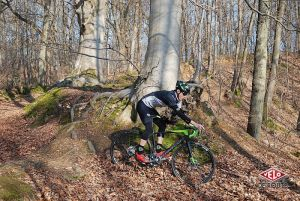 gallery Norco Search - une aventure canadienne