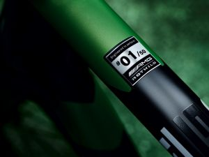 """Rotwild R.S2 """"Beast of the Green Hell"""""""